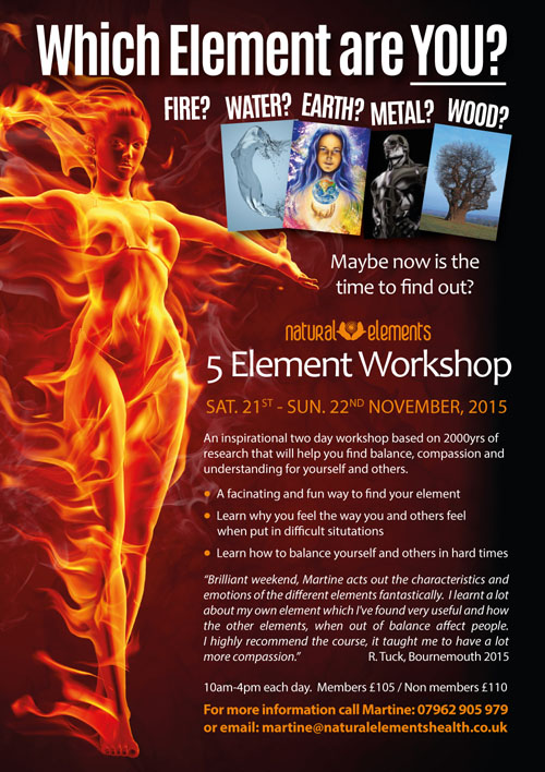 Five Element Workshop Discover Your Element 2015